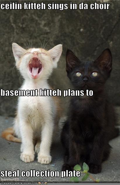 //i.pinimg.com/736x/73/19/e9/7319e...k-cats.jpg & Ceiling Cat ... Basement Cat