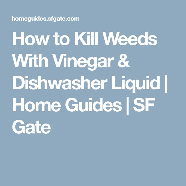 How to Kill Weeds With Vinegar & Dishwasher Liquid | Home Guides | SF Gate
