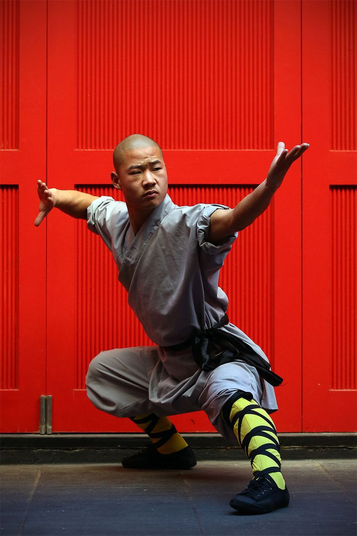 Shaolin martial arts something is