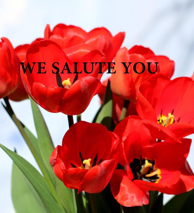 In salutation to all martyrs who sacrificed their life in World War I we are offering special discount all through the day. So grab the chance @ www.bestofelectricals.com. Let's salute the real heroes and their family.