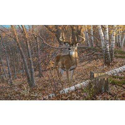 55 best art wildlife images on pinterest driftwood for Deer mural wallpaper