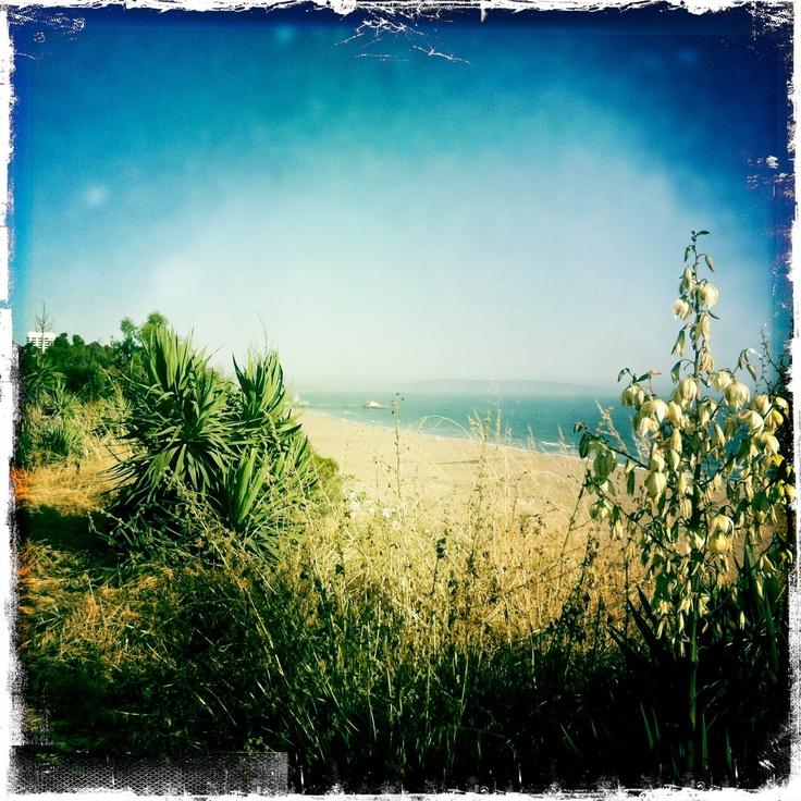 santa monica: Santa Monica, Monica Bays