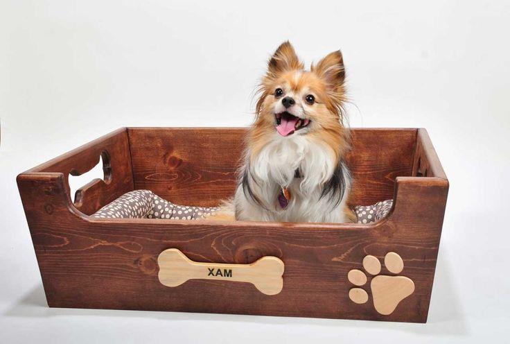 Cute-Dog-Furniture-Design ~ http://www.lookmyhomes.com/smart-in-choosing-dog-furniture/