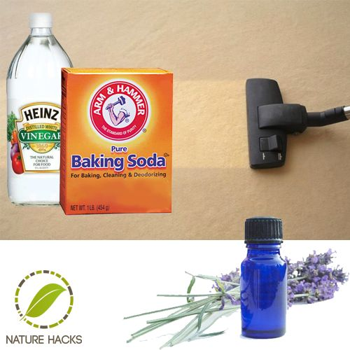 Equal parts water and vinegar. The cleaning solution can be added right into any carpet steamer.  Opt: Add a few drops of essential oil.  Lavender will help to protect your carpet from fleas and bed bugs which are repelled by lavender essential oil.  Difficult stains: add to the vinegar mixture equal parts liquid soap and baking soda to spot clean.