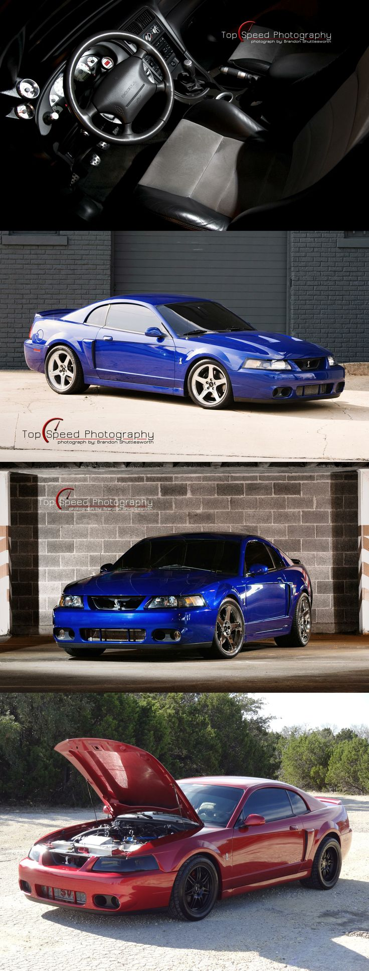 Blue 2003 Ford Mustang SVT Cobra