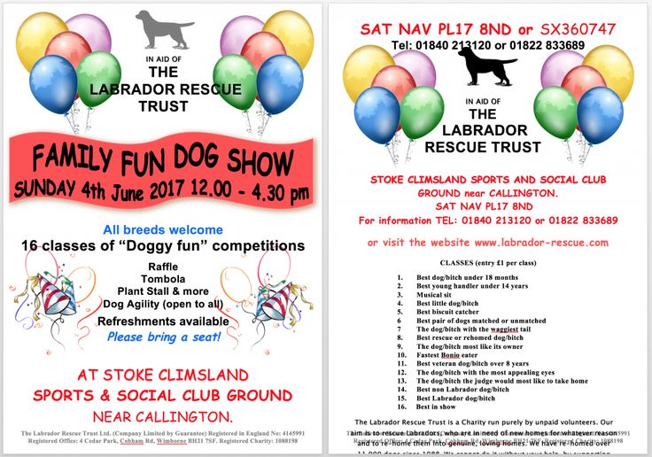 Family Fun Dog Show - 4th June 2017 - Labrador Rescue Trust | Rescue and Rehoming Labradors