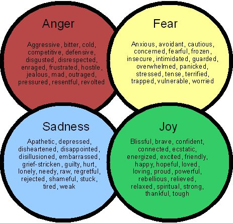 Great basic outline of emotions......excellent for a handout in therapy.