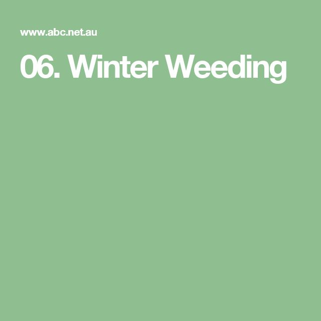 06. Winter Weeding