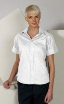 Women's Wrinkle Free Open Neck Short Sleeve Poplin Blouse