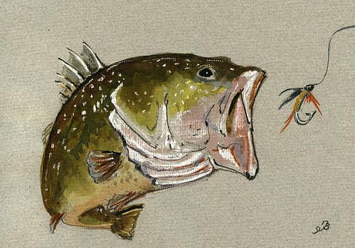 17 Best images about FISH PRINTS on Pinterest   Limited ...