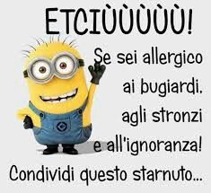 Allergia cronica