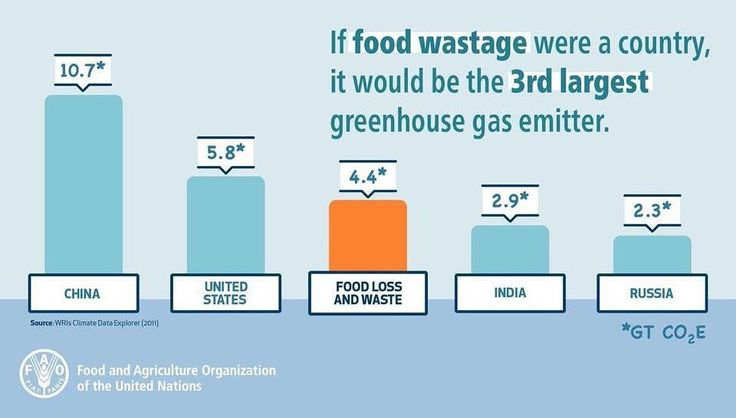 If good waste were a country it would be the third largest country - UN-FAO