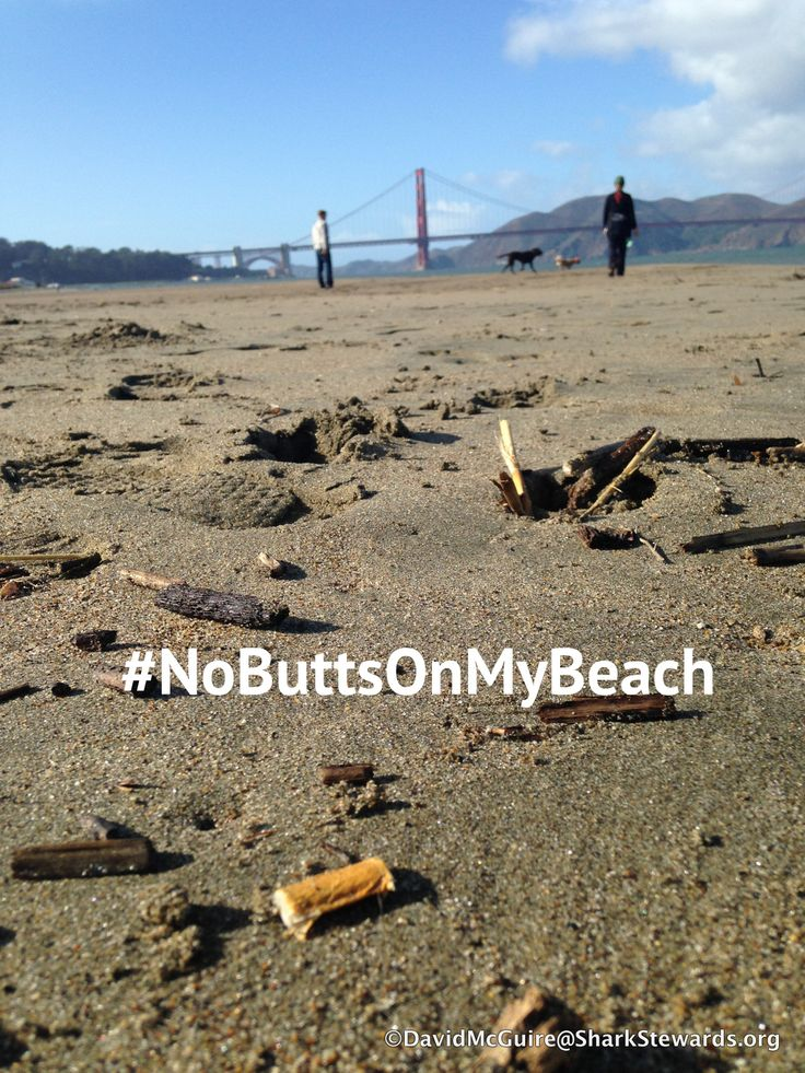 Butts clean up Crissy Field #NoButtsonMyBeach, Aquatic Park 12/12