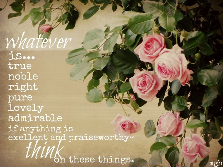 Finally, brothers and sisters, whatever is true, whatever is noble, whatever is right, whatever is pure, whatever is lovely, whatever is admirable—if anything is excellent or praiseworthy—think about such things.