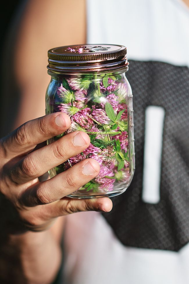 How to make a Red Clover Infusion for Psoriasis and Skin Conditions