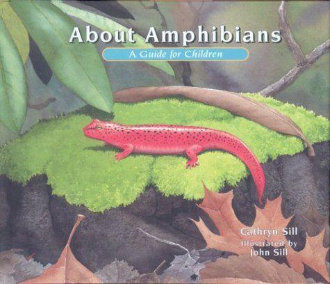 Amphibian Study Guide Answers - dev.blueskyagency.com