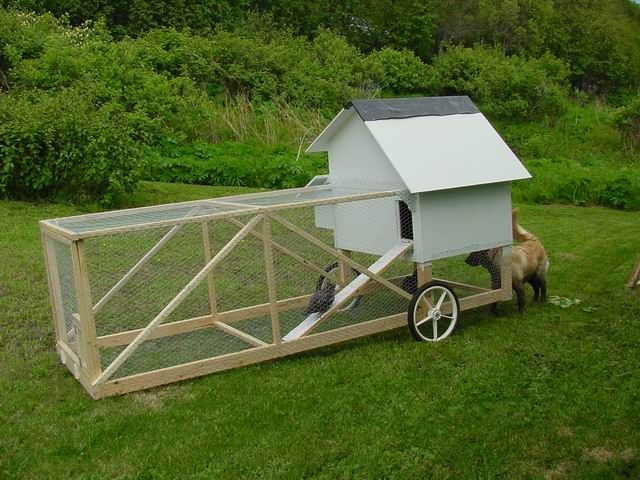 "Almost finished with the primary hen house.  Next up, to make a ""Chicken Tractor"": Allow Chickens, Chicken Tractor 3 Jpg, Chicken Coop Plans, Mission, Animal Farming, Chicken Tractor Plans, Chicken Coops Tractors, Chicken House, Chicken Tractors Plans"