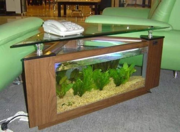 Fish Tank Coffee Table - http://hollandms.com/fish-tank-coffee-table/ : #CoffeTable Fish tank coffee table, in an area. I found one yet, most likely not. You can find fish tank coffee table as aquariums. Once assembled and filled with plants and fish, which are transformed into beauty topics that you need to keep and bear inside his residence. The aquarium coffee table is a ...