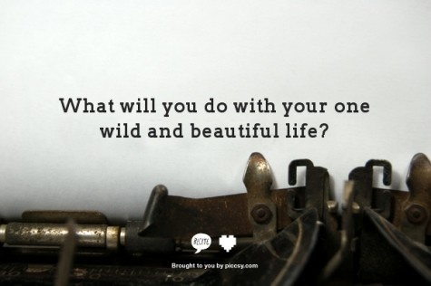 : Writers Writing, Creative Blog, Daily Writing, Writing Creative, Blair Waldorf, Quote, Writing Prompts, Martin Luther, Beautiful Life