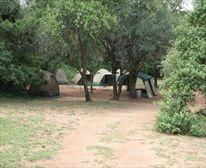 Camp Site at Berg-en-Dal Restcamp