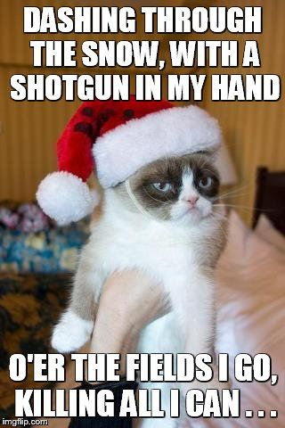 Grumpy cat dashing through the snow on a pair of broken skies - Google Search