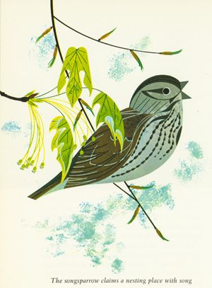 Charley Harper sparrow