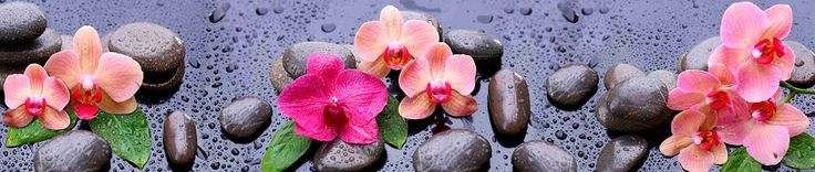 КФ-006 Розовые орхидеи на камнях