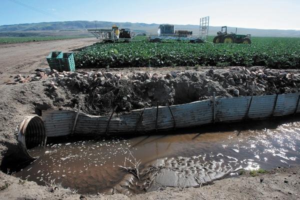 Runoff from farmland near Santa Maria River in California