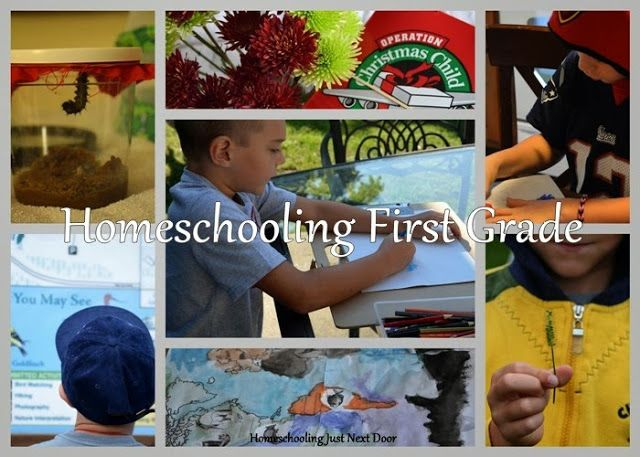 Homeschooling Just Next Door: Homeschooling First Grade - What does homeschooling first grade look like? A glimpse into our year, and possibly my last time through first grade.