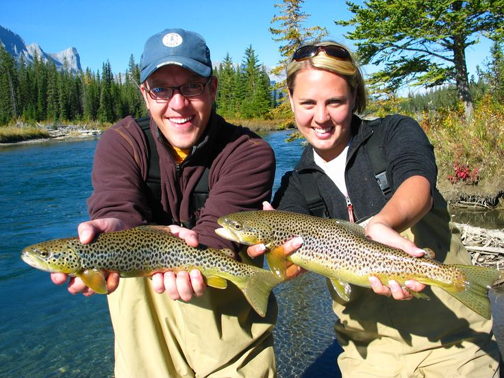 17 best images about bow river alberta on pinterest fly for Fishing in banff
