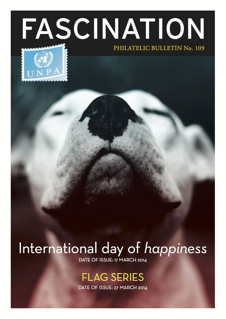 Pit Bull Chosen as the International Face of Happiness - <3