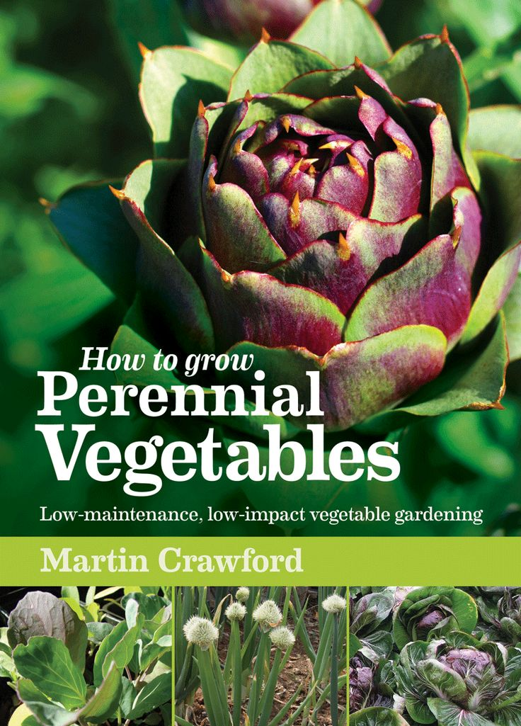 38 best Perennial Vegetables images on Pinterest Perennial