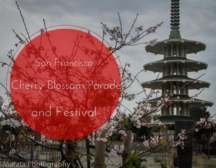 San Francisco Cherry blossom parade, Highlights of the parade, festival and Japan town in San Francisco
