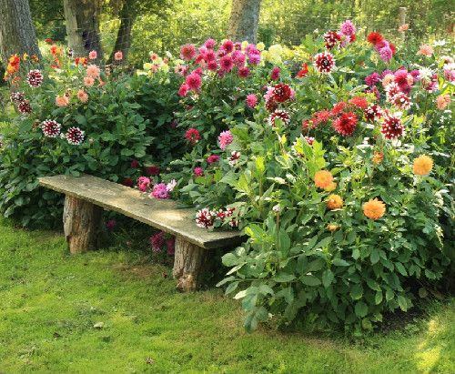 I want this..beautiful..: Flowers Gardens, Gardens Ideas, Gardens Seats, Trees Trunks, Rustic Gardens, Rustic Benches, Prayer Garden, Trees Stumps, Gardens Benches