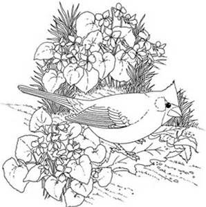 free full size coloring pages for adults  bing images  bird coloring pages flower coloring