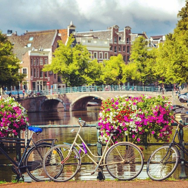 Amsterdam's quintessentials: #bike #flowers and #canal # ...