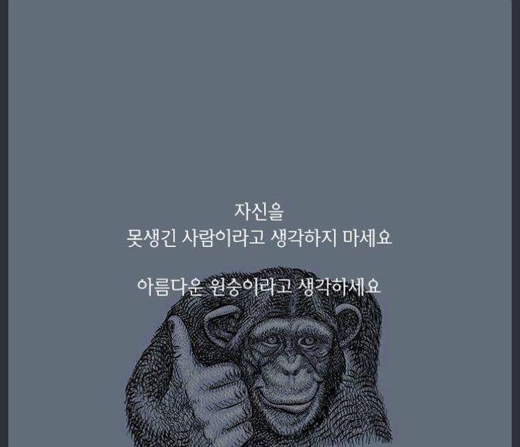 원숭이...ㅋㅋㅋ