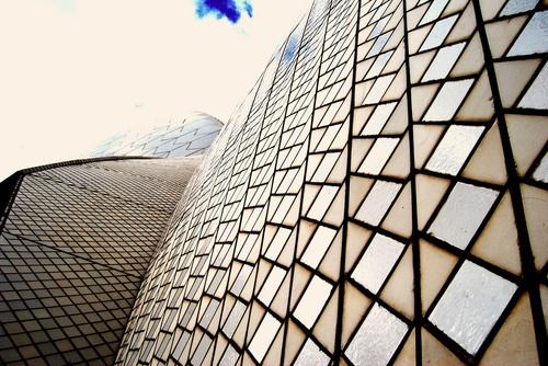 Sydney Opera House Close-Up