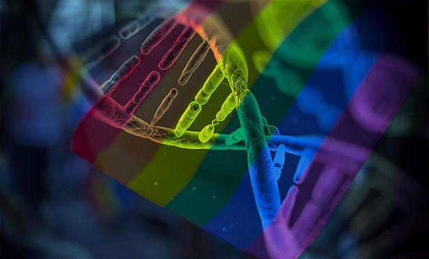 #Homosexualität: Eine Frage der Gene? - scinexx | Das Wissensmagazin: scinexx | Das Wissensmagazin Homosexualität: Eine Frage der Gene?…