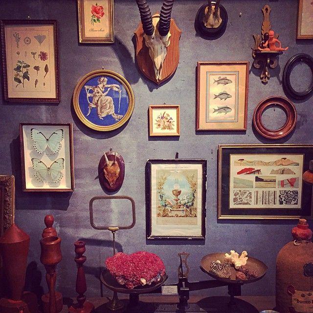 店内模様替えしました! 「家に額をたくさん飾りたい!」というお客様がとても多いのでイメージしやすいようにディスプレイしました。 大小様々な額、フレームのみの額、そしてアクセントにハンティングトロフィー・蝶標本を加えました。 本日は雨模様ですが、是非見に来てください! #Sibora #siborakobe#シボラ#アンティーク#額#ハンティングトロフィー#蝶標本#珊瑚
