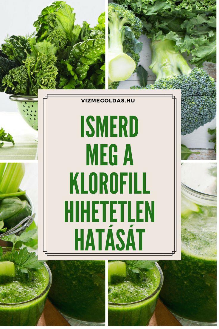 Tiszta étkezés -  Ismerd meg a klorofill hihetetlen vérképző és nehézfém eltávolító hatását