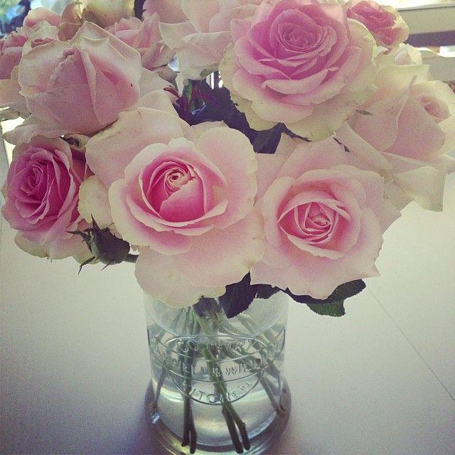 Pink David Austin Roses at Avonlea Flowers