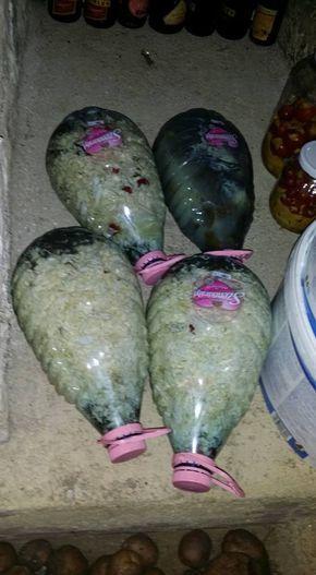 Boros Vali szabolcsi háziasszony valóságos lavinát indított el, amikor megmutatta, hogy kell műanyag ásványvizes palackban savanyúságot elte...