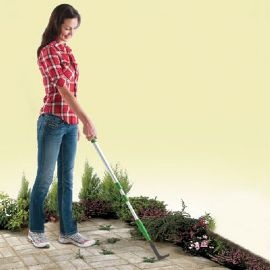 how to clean moss and weeds from backyard