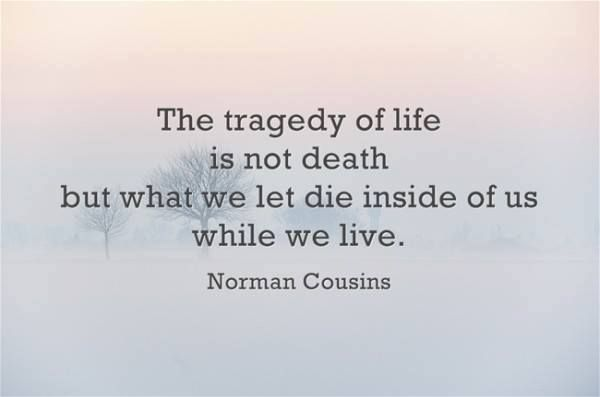 Norman Cousins Quote: The Tragedy of Life..