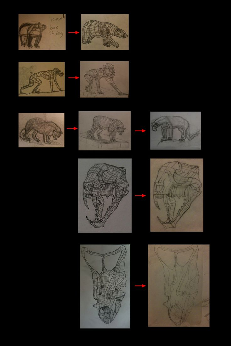 Studying form from life at the Royal Ontario Museum and the steps I took in order to figure out what form is.  First drawing was done at the beginning of 2010. Took me 10 mins to figure out the boxes in the first drawing lol Later drawings were done towards the end of the same year.