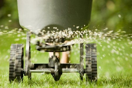 Get our monthly lawn care tips, know what needs doing every month on your lawn and landscape.