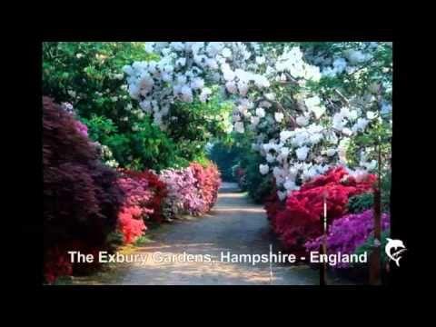 Самые красивые сады мира-2