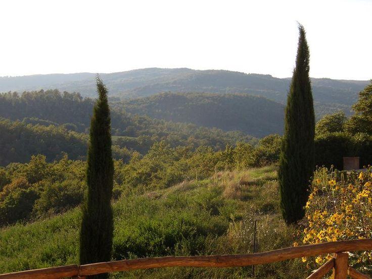Oase van rust tussen Rome en Firenze.€490000