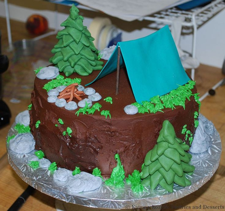 Best 25 Camping Recipes Ideas On Pinterest: Best 25+ Camping Birthday Cake Ideas On Pinterest